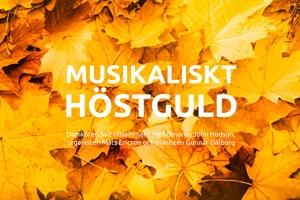 Liten bild för inbjudan till konsert i Åhus