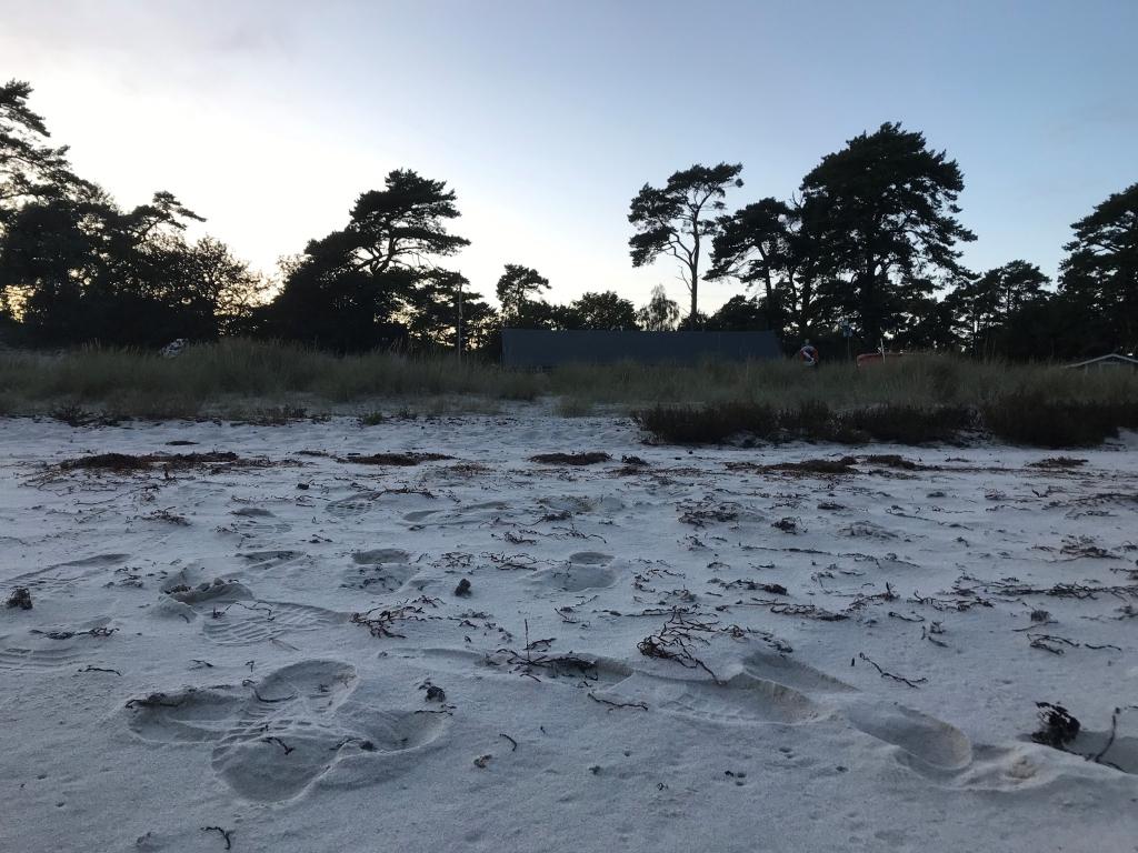 Ålabodstak på stranden